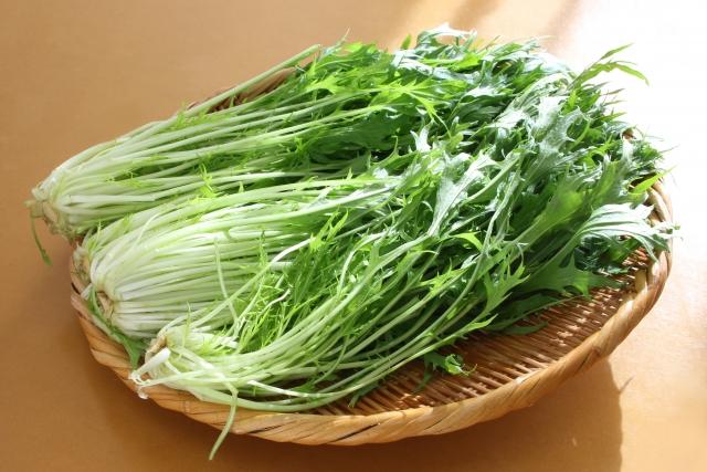 葉酸と水菜