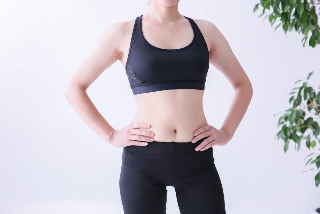 葉酸と筋肉
